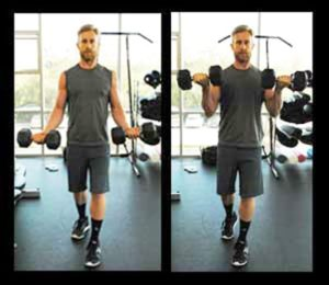 Moves-Biceps-Standing-Curl