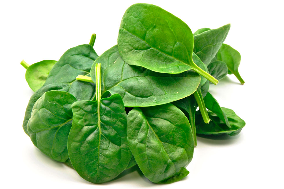 spinach best source of nutrition