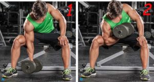 dumbbell-concentration-curls-