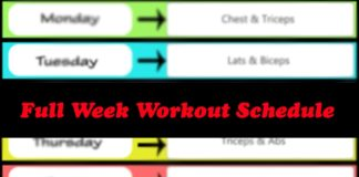 full week workout plan
