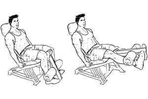 Seated_Machine_Leg_Extensions
