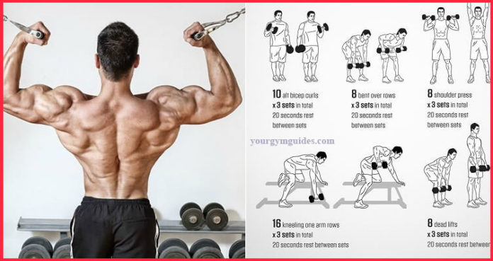 Back And Biceps workout compound exercises Best Workout Combination