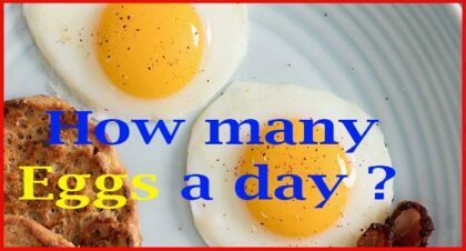 how many eggs a day should i eat daily for bodybuilding.com 2