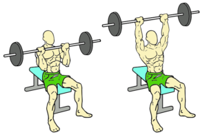 seated shoulder exercise push press