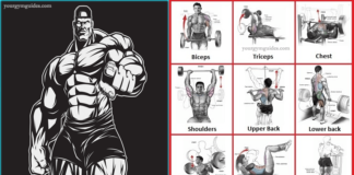 How to Lift Weights to gain Build Muscle