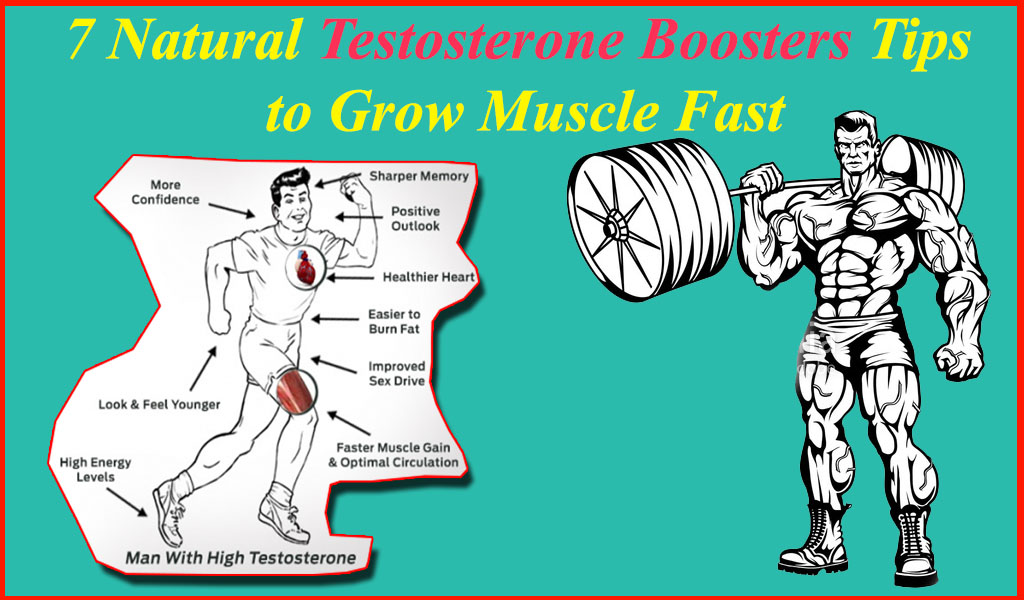 7 Natural Testosterone Boosters Tips to Grow Muscle Fast