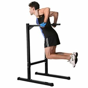Parallel Bar triceps Dips deltoid muscle build good triceps  triceps workouts at the gym