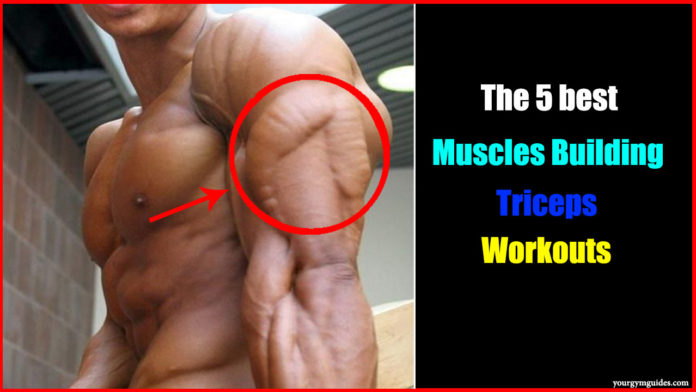 best tricep workout at gym exercises