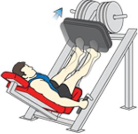 45 degree calf press exercise