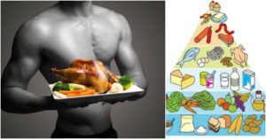 Chicken benefit for muscle growth