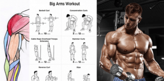 The Best Bicep Workout for Arm Size