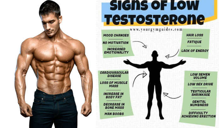 Increasing testerone naturally faster 12 sign of low Testosterone in men how to increase boost testorone testos boost testoserone level