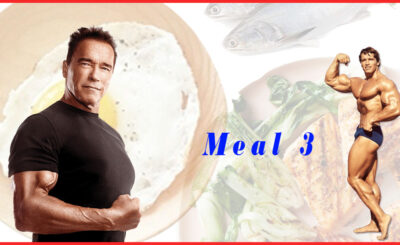 gain weight with this simple diet meal muscle build