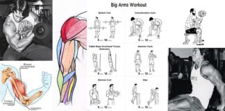 Biceps Triceps Superset Workout