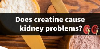 creatine side effects kidneys