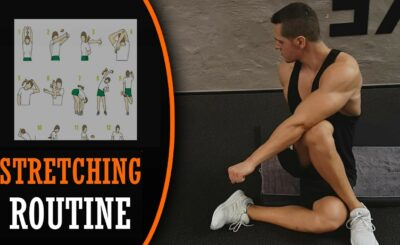 stretching exercises routine flexibility exercises