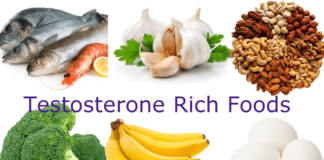 testosterone booster food