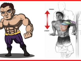 How to get the most out of your workout -- 24 bodybuilding tips ( 2019 )