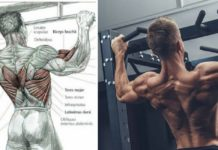 how to improve pull ups for beginners ? 5 Tips Improve Your Pull Up Powew