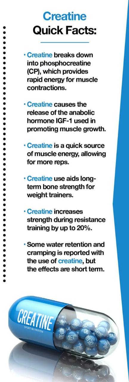 Quick facts about creatine