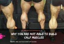Why you are not able to build calf muscles