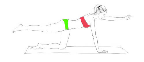 arm up plank workout
